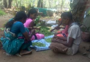 Rajwadi Vegetable selling Project