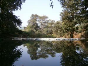 Small dam built by Rajwadi villagers.